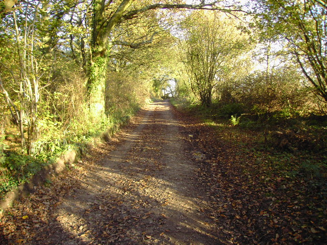 Byway near Whitway