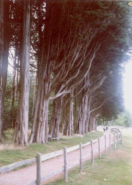 Path to Plas Newydd, Llanedwen