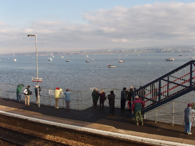 Starcross Station and the Exe Estuary and birdwatchers