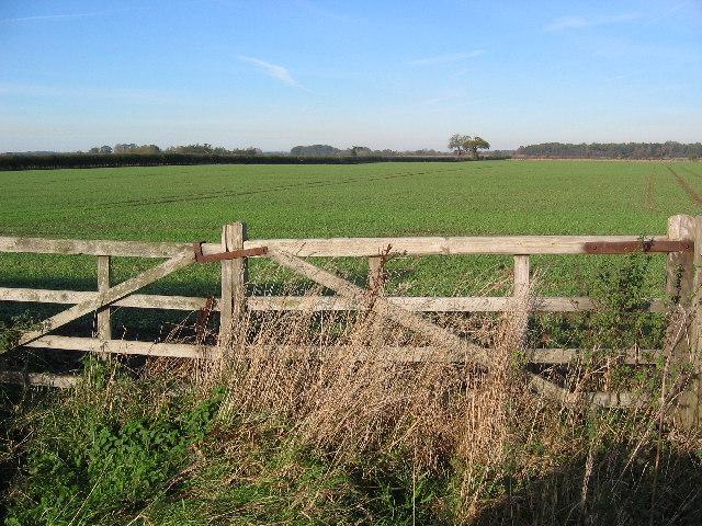 Farmland North of Leconfield