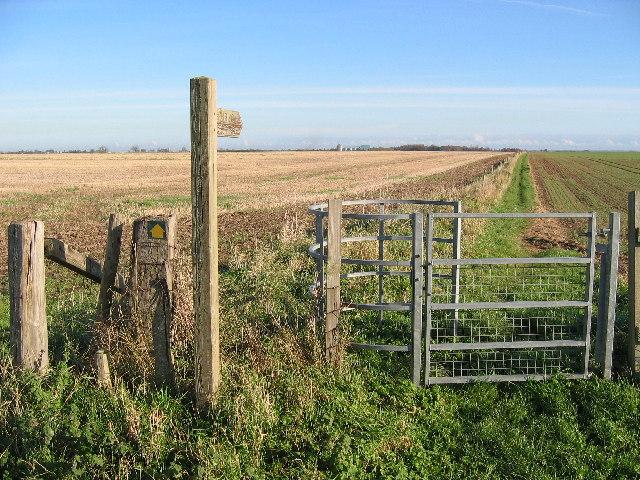 Farmland at TA002513