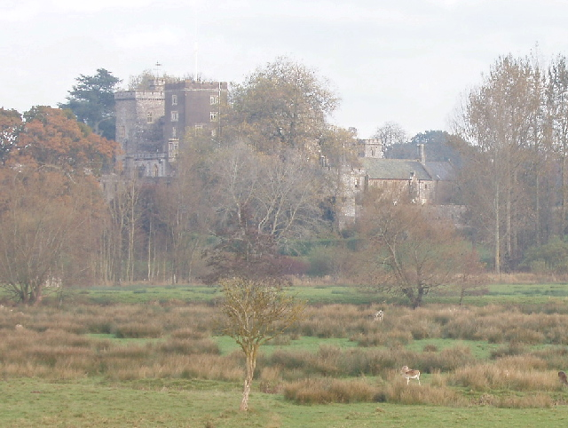 Powderham Castle and deer park, near Exeter