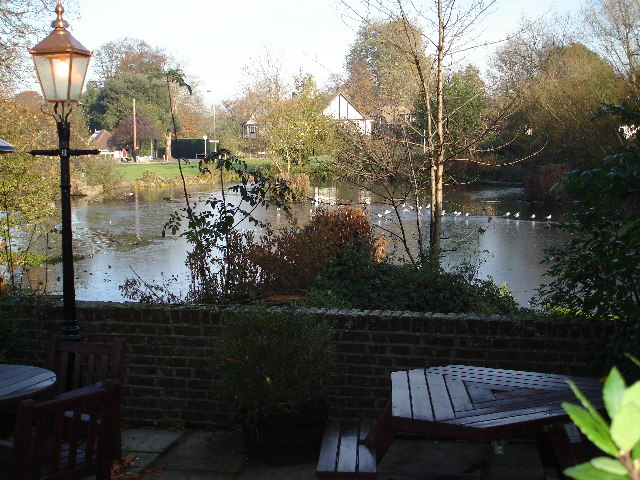 Duck pond on Stamford Green, Epsom Common