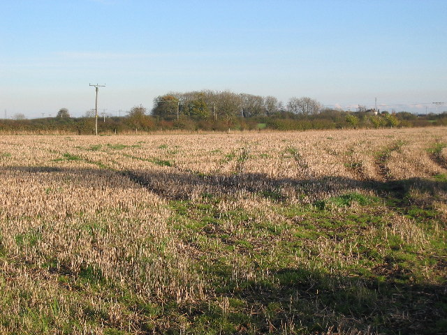 Farmland South of Driffield