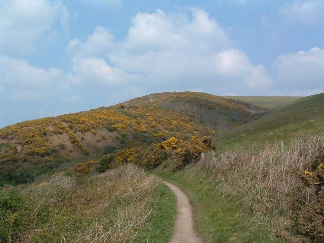 South West Coastpath: Pickwell Down