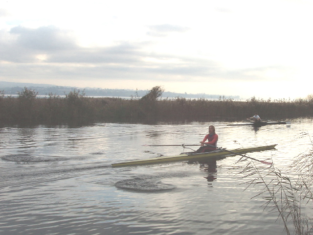 Scullers on Exeter Canal