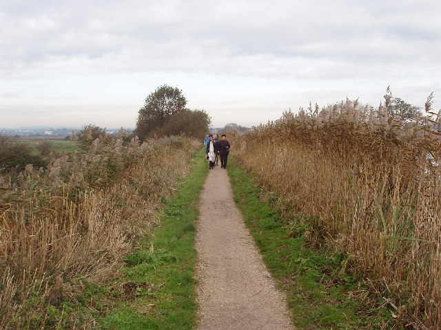 Walkers on Exeter Canal footpath