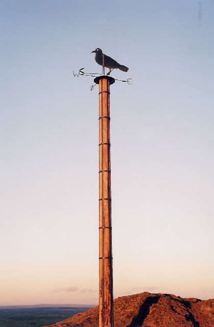 The Crow On The Pole At The Top of The Lawley