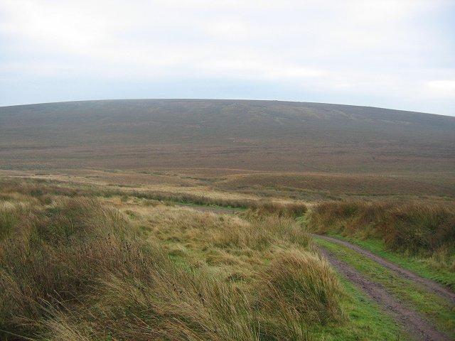 North Muir
