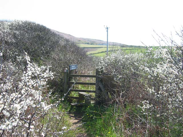 Stile by Broughton Bay