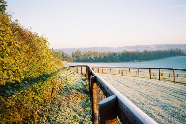 Frosty gallops, Rosehill