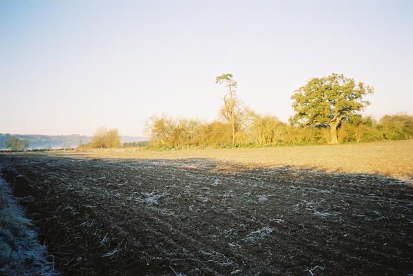 Frosty arable farmland near Hurley