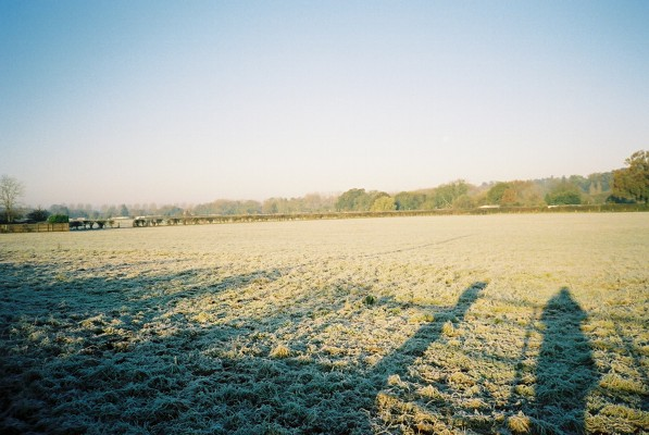 Frosty pasture, Hurley