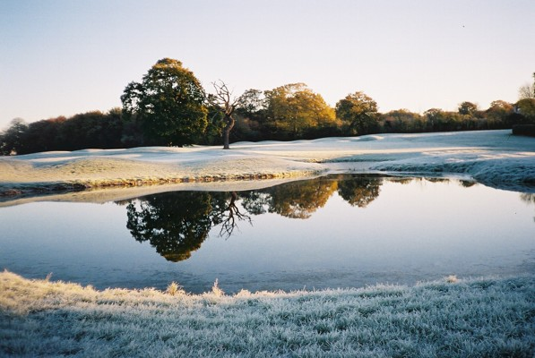 Frost and reflections, Hennerton Golf Club