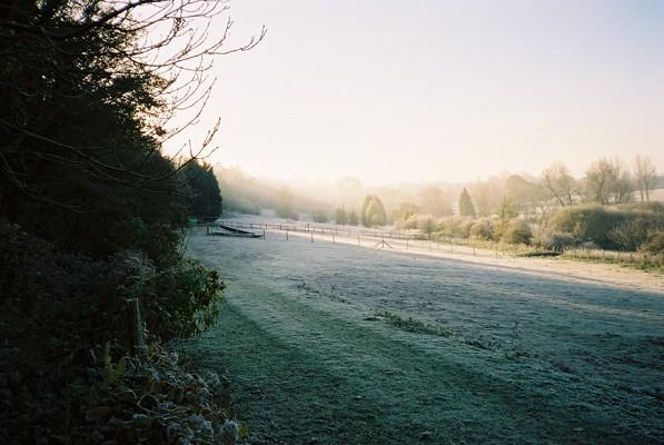 Frosty meadows near Wargrave