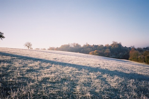 Frosty hillside, near Wargrave