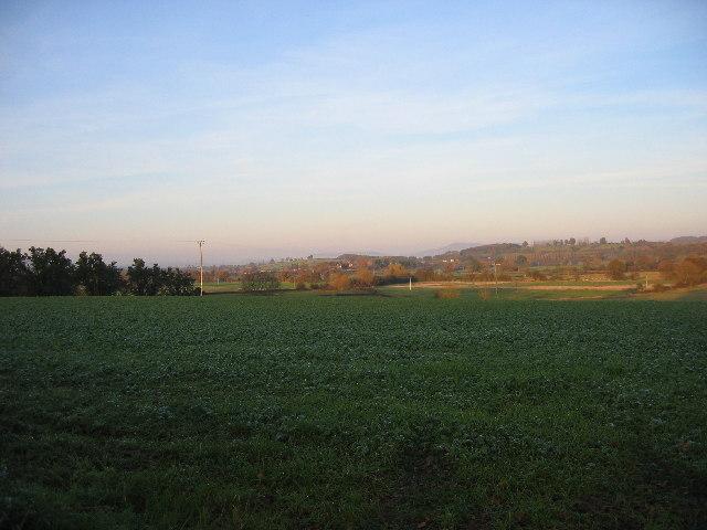 Near Luston