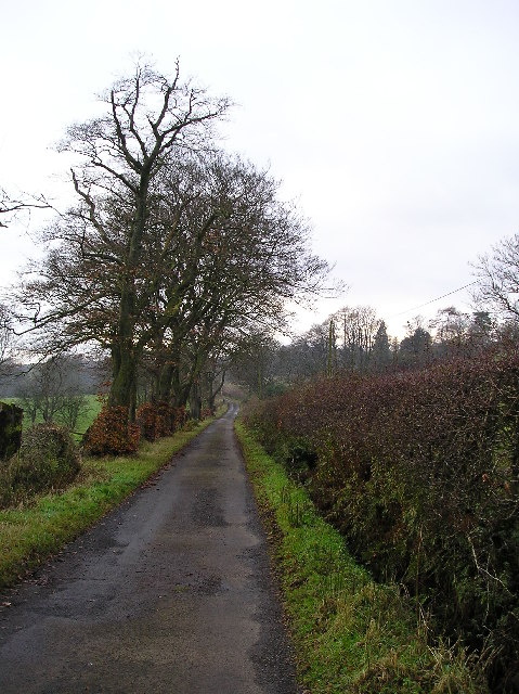 Corsefield Road