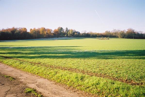 The Culham Estate