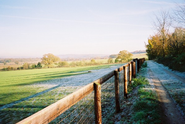 Horses' paddock above Hurley