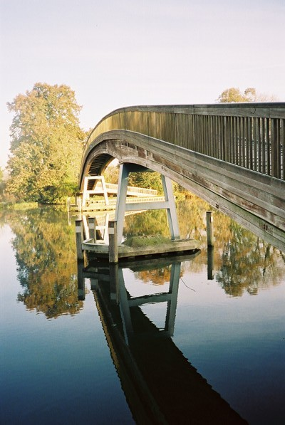 River Thames - reflection of trees and footbridge