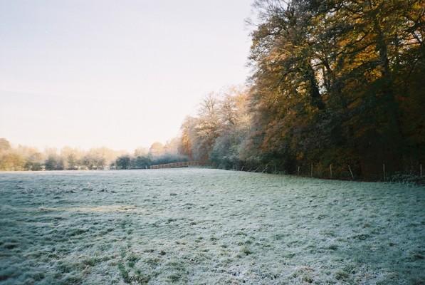 Frosty farmland next to Quarry Wood