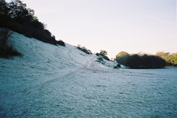 The hillside above Cock Marsh