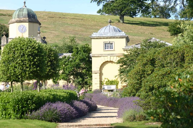 The lavender walk at Castle Hill Gardens