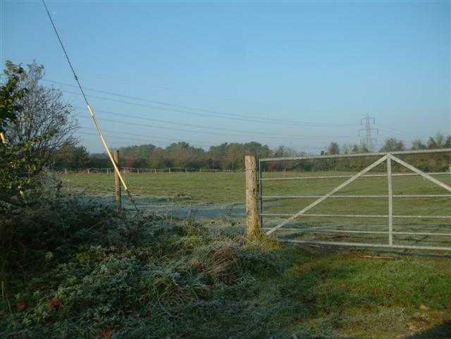 Fields in Moulsford Bottom