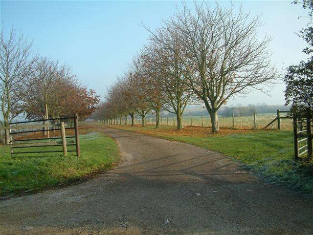Bunker's Road