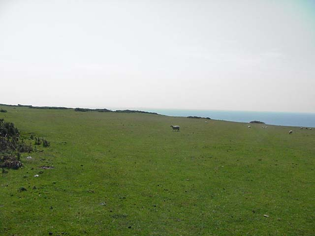 Fields above Oxwich Point