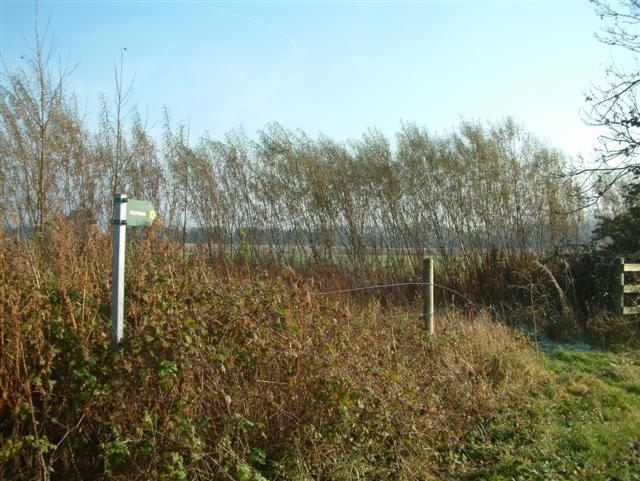 The footpath to Manor Farm