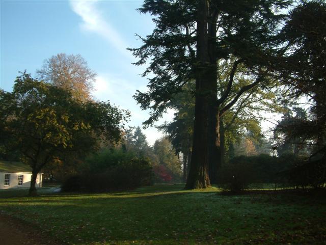 Nuneham Courtenay Arboretum