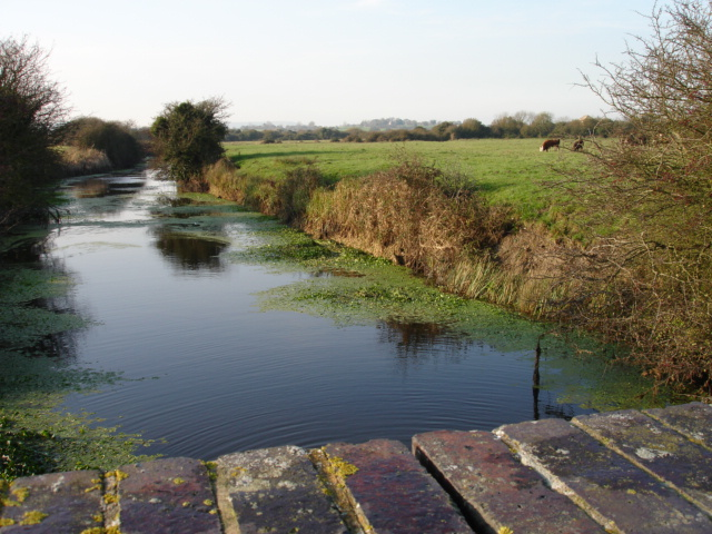 Chilley Stream Nr Pevensey East Sussex