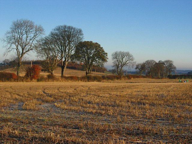 Stubble off the Salter's Road.
