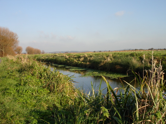 Down Sewer Pevensey Levels  East Sussex