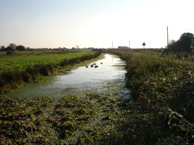 Horse Eye Level Stream Nr Hailsham East Sussex