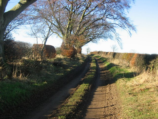 Farm track, Upper Keith.