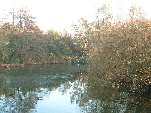 Lake taken from Trout Lane
