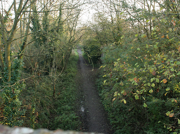 Downs Link cycle path