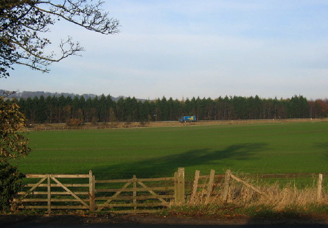 Field, A69 and Red House Plantation, Corbridge