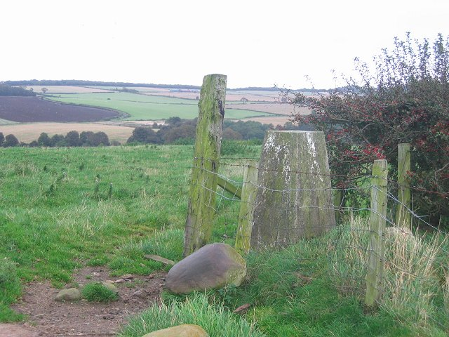 Waulkmilton trig point.