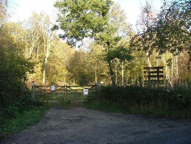 Eaton Woods Nature Reserve N Notts