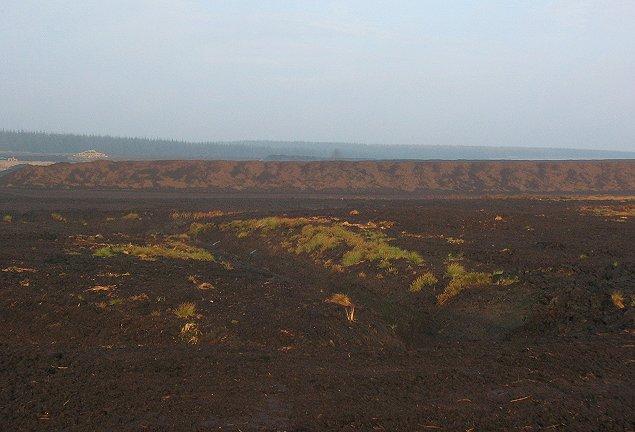 Auchencorth Moss peat works.
