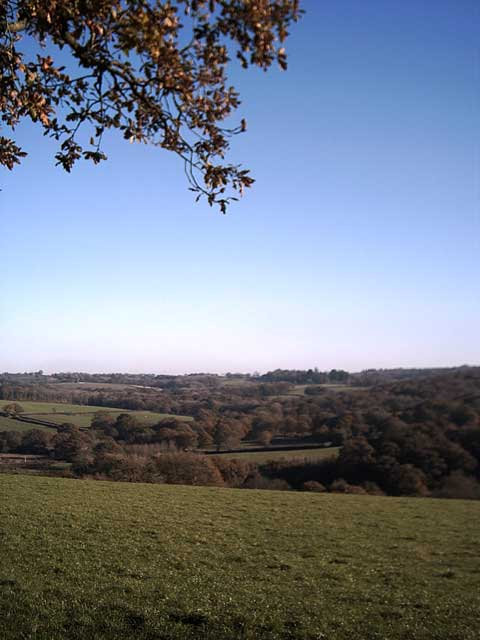 Farmland near Bondleigh Wood Farm
