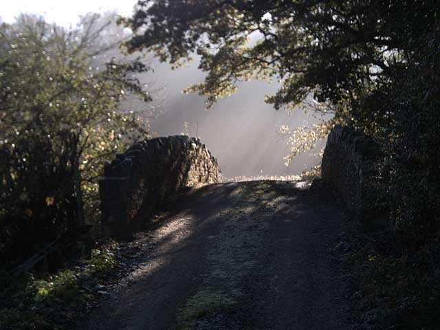 Bridge near Westacott Wood
