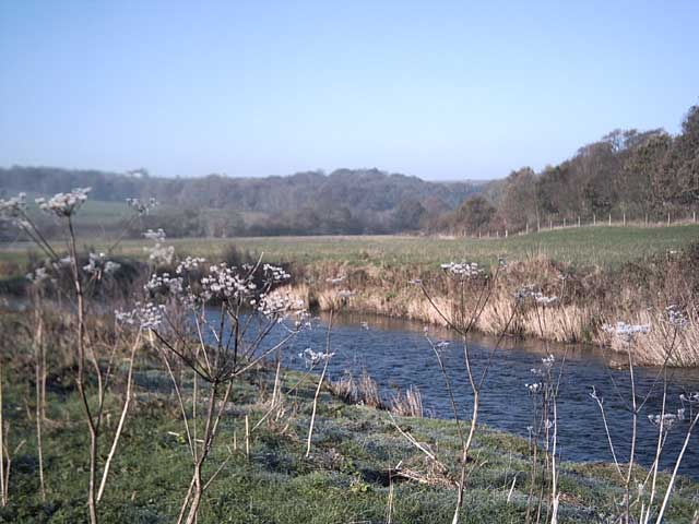 River Taw near Chenson Bridge