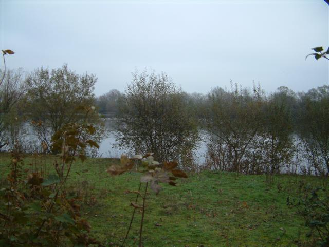 Queenford Farm Lake