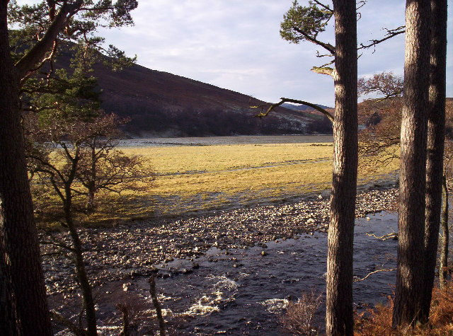 River North Esk and Flood Plain Fields