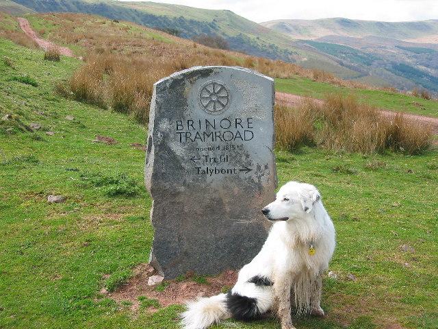 Stone sign marking Bryn Oer Tramroad